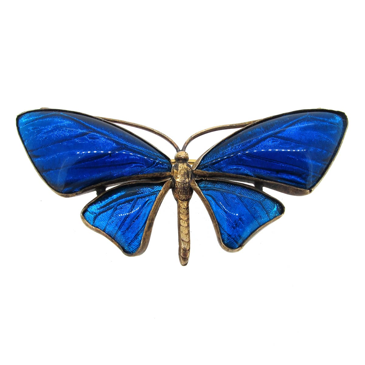 Antique Butterfly Wing Brooch